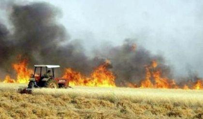 زراعة  نينوى تكشف ارقاماً مخيفة عن حجم الاراضي الزراعية المتضررة جراء الحرائق