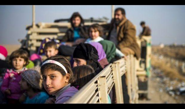 الهجرة تعلن عودة 114 نازحا من تركيا إلى العراق