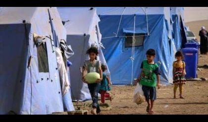 نائب عن نينوى يكشف عمليات فساد في سلال الأغذية الممنوحة لنازحي الموصل