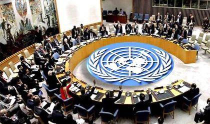 الإمارات تعلن ترشحها لمقعد غير دائم في مجلس الأمن