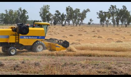تجهيز الخطة الزراعية في الموصل بـ 28 مليون لتر من زيت الكاز
