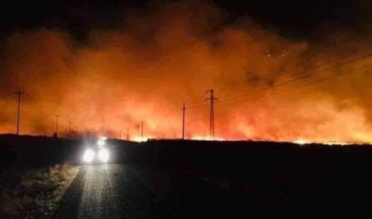 نينوى تطلب دعما من الحكومة المركزية والمنظمات الدولية لاخماد الحرائق