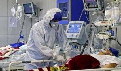 وزارة الصحة تسجل ٨٣ إصابة جديدة بفيروس كورونا