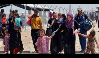 الهجرة تعيد 231 نازحا من تركيا الى الساحل الايسر في الموصل