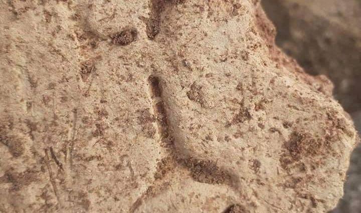 اكتشاف أثري جديد في نينوى