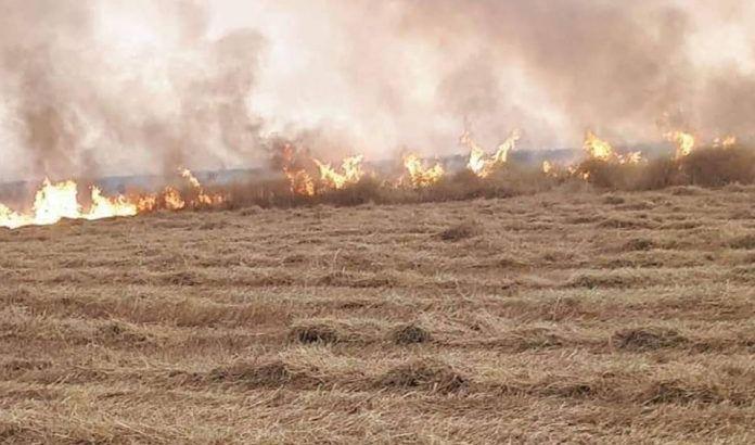 نينوى تعلن انتهاء أزمة الحرائق في حقول الحنطة والشعير