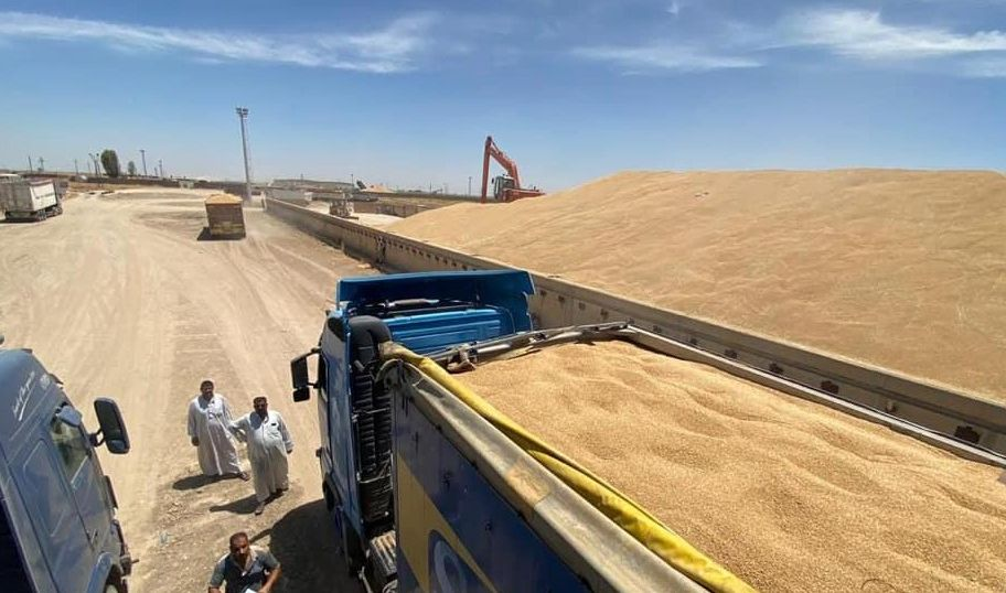 التجارة تكشف الكميات المسوقة من الحنطة المحلية حتى اليوم