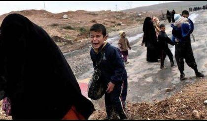 الأمم المتحدة: مقتل أكثر من 231 من الفارين من الموصل على يد داعش