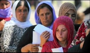 إحصائية جديدة بجرائم داعش بحق الايزيديين منذ سقوط الموصل