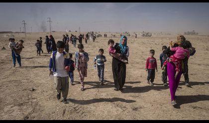 مرصد الحريات للدفاع عن المراة: داعش يرتكب مجزرة الجديدة بحق النساء والأطفال في الموصل