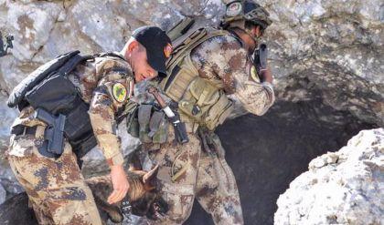 مُكافحة الإرهاب يقتل 12 عنصراً من داعش في قرة جوخ