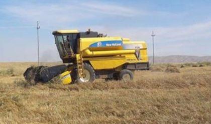 زراعة نينوى تطلق حملة الحصاد الميكانيكي لمحصول الشعير