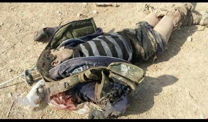 قتل 60 داعشياً بينهم [أمير حسبة] في أيمن الموصل