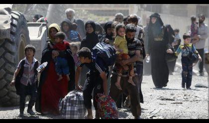 """القوات العراقية ..تقاتل داعش وتكافح""""النهب والسرقات""""في الموصل"""
