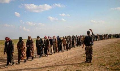عمليات نينوى ترفض نقل نازحين من سوريا للعراق: معظمهم زوجات وأولاد داعش