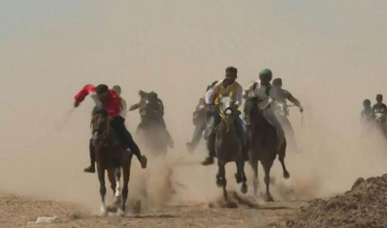 بمشاركة 120 متسابقاً.. انطلاق مهرجان الخيول العربية الأصيلة بالحسكة