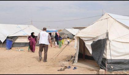 الهجرة النيابية: اكثر من مليون عائلة نازحة من نينوى غير مسجلة رسميا عند الدولة