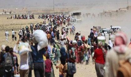 الأمم المتحدة تتوقّع نزوح آلاف الأسر من الموصل في الأيام المقبلة