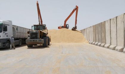 الزراعة: استلمنا مليونين و500 الف طن من الحنطة
